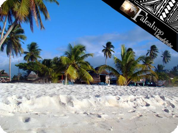 Falealupo_beachfales_02