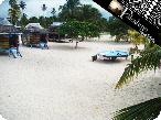 Falealupo_beachfales_06